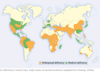 Map of areas in the world with zinc deficiencies in their crops.