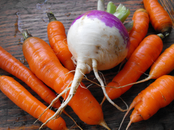 Carrots and a turnip