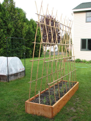 Trellis in a square foot garden