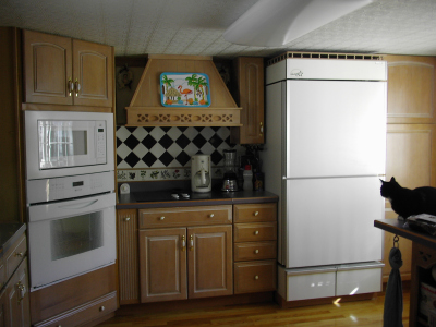 Energy star appliances in the kitchen