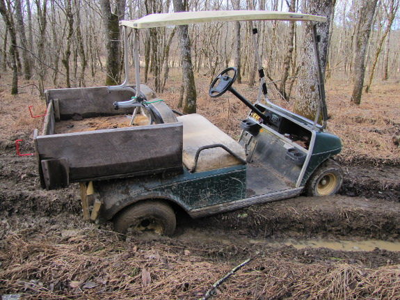 Golf cart stuck in the ruts