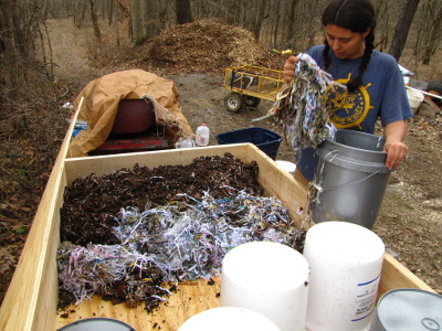 Filling a worm bin with bedding