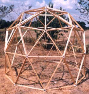 geodesic 2x4 dome or 1x1