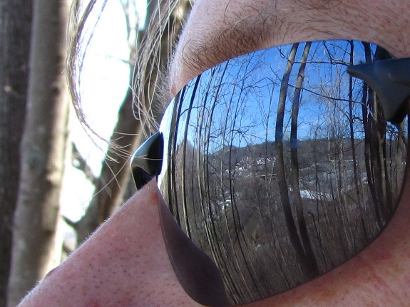 Reflection of trees in sunglasses