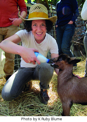 Bottle feeding a goat