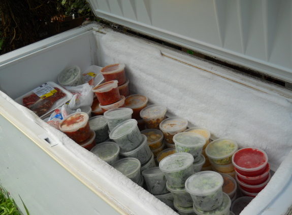 harvest bounty in the form of a 2/3rds full freezer