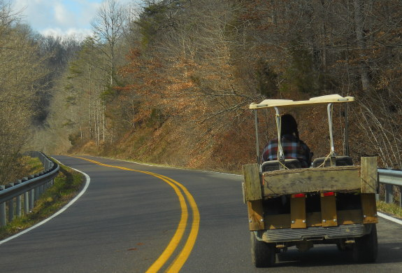 Anna driving the golf cart on the 2 lane road near our home