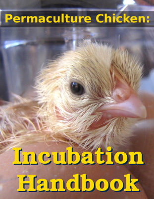 Incubation Handbook