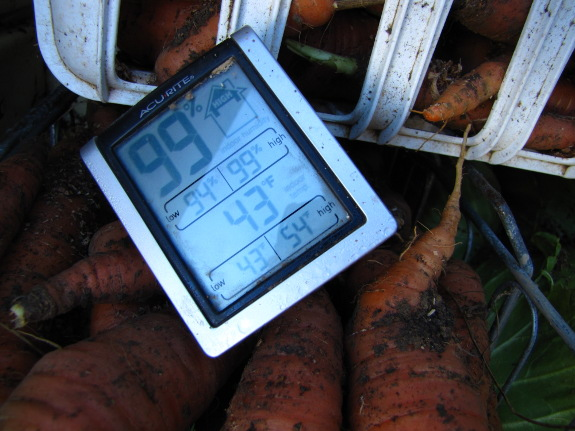 Root cellar thermometer