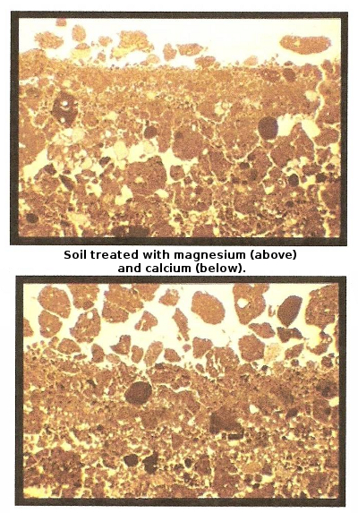 Calcium and magnesium in soil