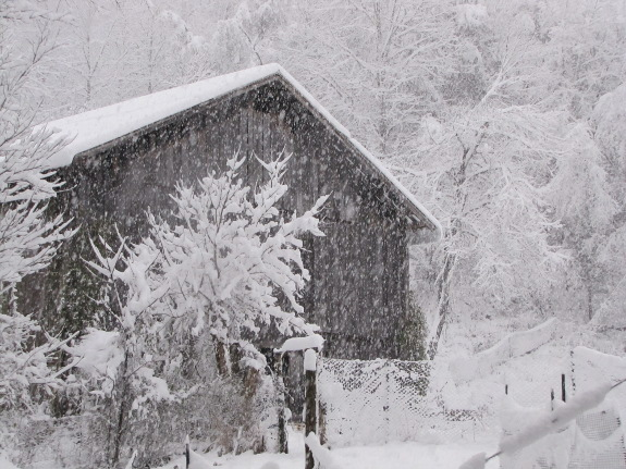 Snow on the barn