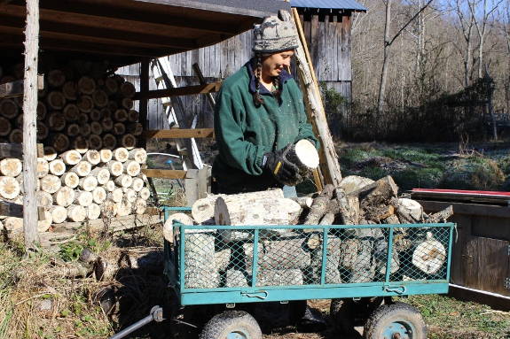 Anna loading up garden wagon with firewood